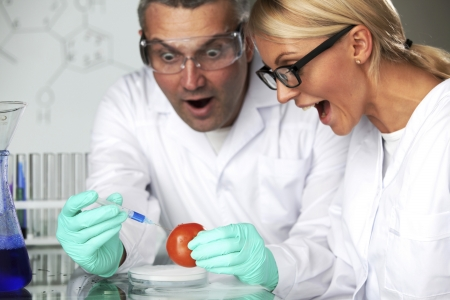 manand woman try to change tomato DNA photo