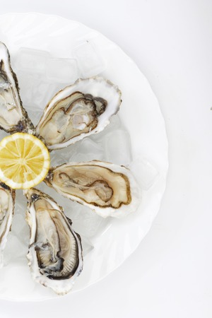 half fish: Oysters with lemon on white plate