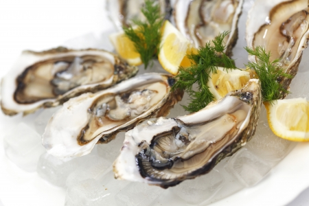 half fish: Oysters with lemon and dill on plate with ice Stock Photo