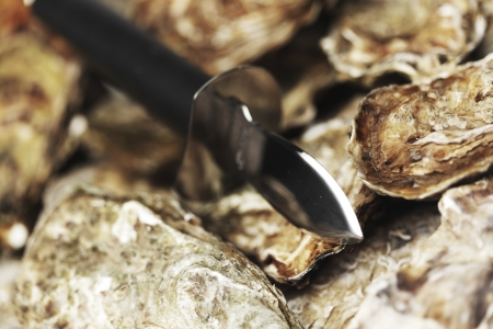 Oysters and knife macro close-up photo