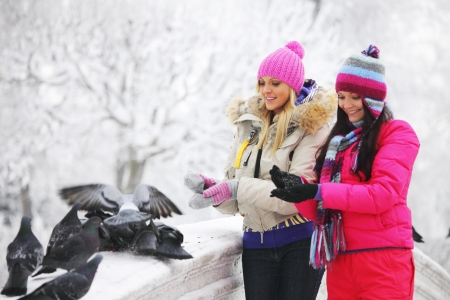 winter women give food to the pigeon photo