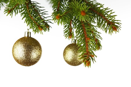 Golden christmas decoration on fir branch isolated on white background photo