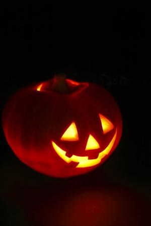 Illuminated cute halloween pumpkin on black background