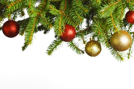 Christmas decoration on fir branch  photo