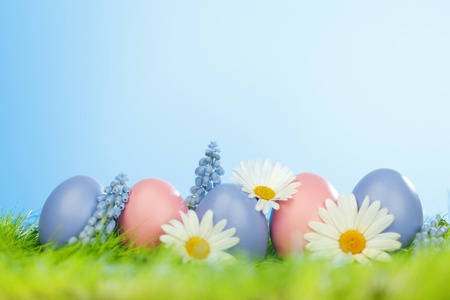 Decorated easter eggs and flowers in spring grass photo