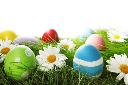Easter Greeting Card with decorated eggs in the grass and flowers photo