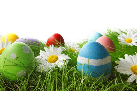 Easter Greeting Card with decorated Easter eggs in the grass and flowers photo