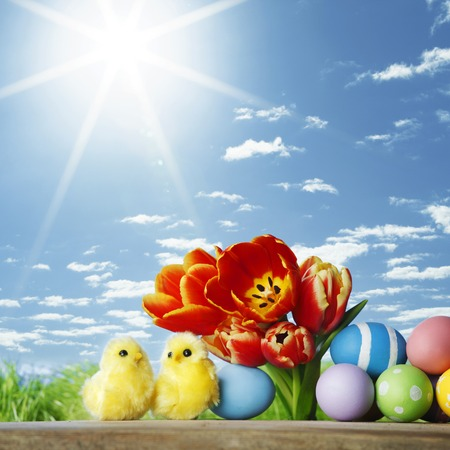 Easter decoration with tulips and colored eggs photo