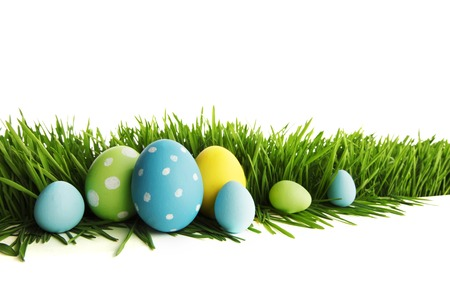 Painted Easter eggs hidden in the grass, isolated on white with copy space photo