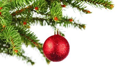 Christmas tree branch with decoration ball isolated on white photo