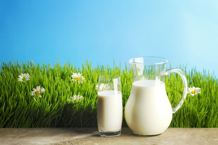 milk jugs: Milk jug and glass on the grass with chamomiles background Stock Photo