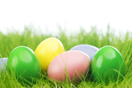 Colorful easter eggs in fresh spring green grass photo