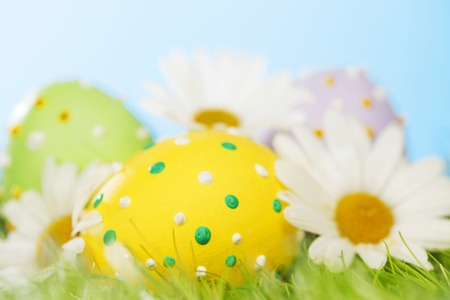 Colorful easter eggs in fresh spring green grass with flowers photo