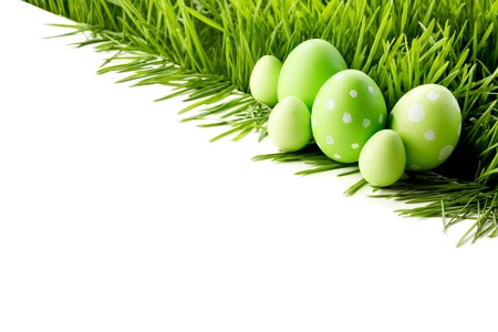 Row of green Easter Eggs in fresh green grass isolated on white background photo