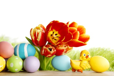 Easter eggs with tulips on spring grass background photo
