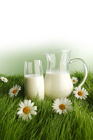 Glass of milk and jar on fresh grass meadow with chamomiles photo