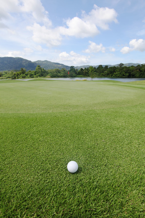 golfball: Golfball on grass of golf course at sunny day