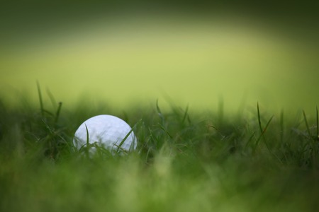 golfcourse: Macro of a golf ball in natural grass of golf course