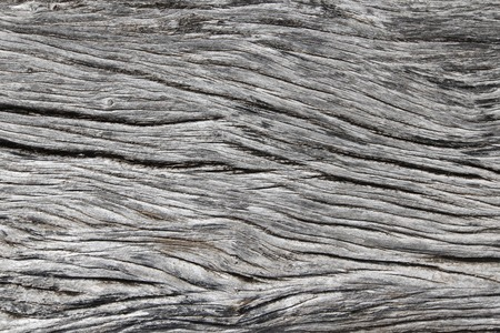 old texture: Old weathered gray wood texture close up