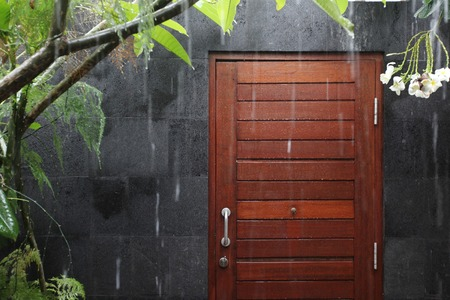 tropical garden: Rain drops and tropical plants and flowers on background