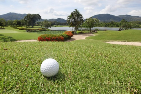 golfball: Golfball on grass of tropical golf course at sunny day
