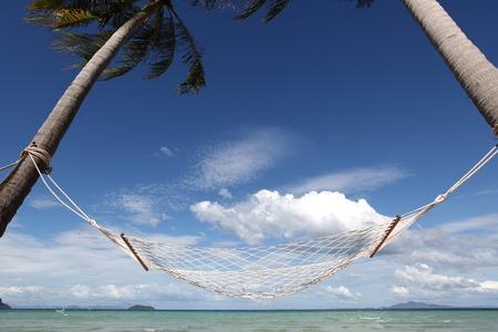 hammock: Empty hammock between palm trees on tropical beach Stock Photo