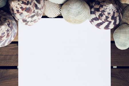 blank spaces: Empty white note paper and shells on wood, Holiday concept Stock Photo
