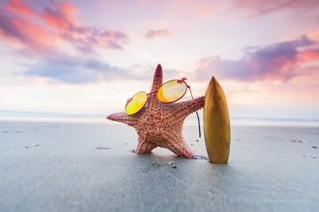 Starfish surfer on the beach and beautiful sunset on Bali