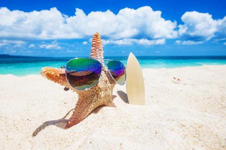 Surfeur étoile sur le sable de la plage tropicale aux philippines Banque d'images - 87206159