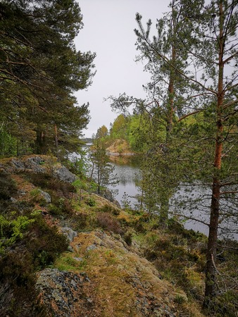 Landscape of lake, stones and pine forest in a rainy day