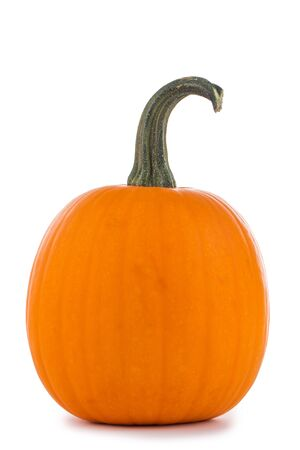 One perfect orange pumpkin isolated on white background for Halloween carving Imagens