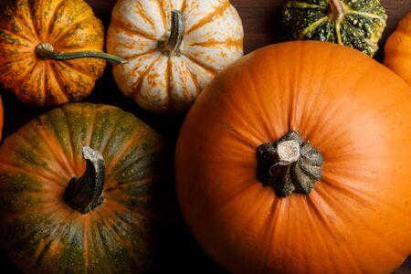 Many orange pumpkins background , Halloween concept