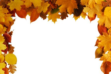 Autumn leaves border frame isolated on white background Stockfoto