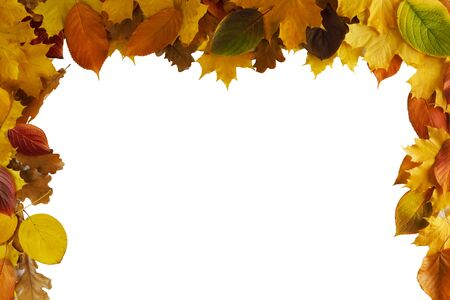 Colorful autumn leaves frame isolated on white background copy space for text