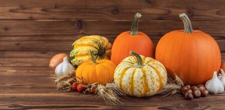 Autumn harvest still life with pumpkins , wheat ears , hazelnuts , garlic , onion and rosehip berries on wooden background