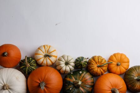 Many orange pumpkins on white background , Halloween concept , top view with copy space