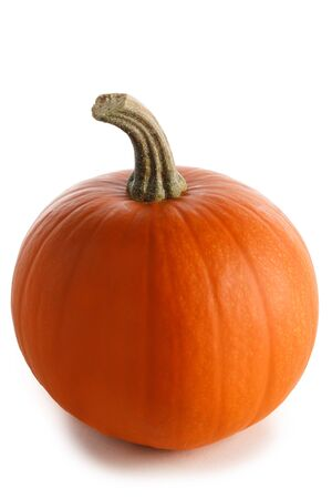 One perfect pumpkin isolated on white background Stockfoto