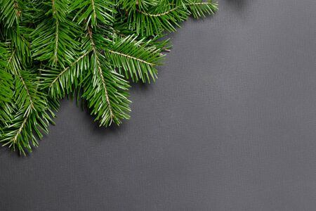 Pine Christmas tree branches on black paper background flat lay top view mock-up Stockfoto