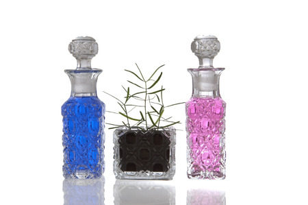 Blue and pink crystal glass bottles with decorative facet structure and plant photo