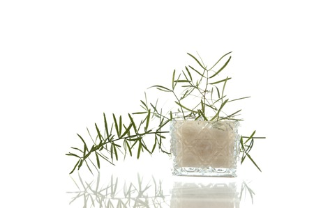 Sparky crystal glass jar with decorative facet structure and plant photo