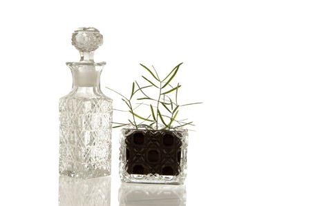 facet: Sparky crystal glass bottle and flask with decorative facet structure and plant Stock Photo