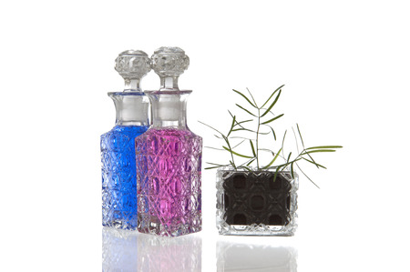 facet: Blue and pink crystal glass carafe with decorative facet structure and plant