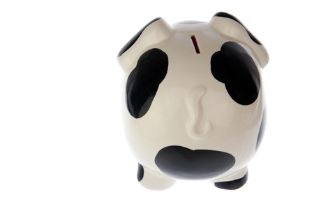 rear end: Piggy bank with black and white cow spots and tail, from the rear end, isolated in white background