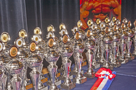 schiedam: The prices and trophees of the 38th Dutch National Championship Bodybuilding and Fitness of the IFBB Netherlands (NBBF) on april 26, 2015 in Theatre aan de Schie at Schiedam, the Netherlands. Winning this A rated Championship leads to qualification to