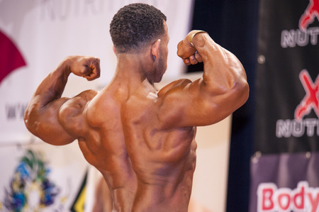 schiedam: SCHIEDAM, THE NETHERLANDS - APRIL 26, 2015. Male bodybuilder shows his best back double biceps pose on stage at the 38th Dutch National Championship Bodybuilding and Fitness of the IFBB Netherlands (NBBF) on april 26, 2015 in Theatre aan de Schie at Sch