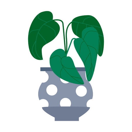 Exotic tropical houseplant in a flower pot. Flat vector illustration. 向量圖像