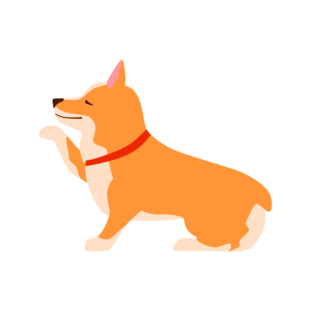 Happy cute dog. Welsh Corgi. Puppy sits and gives paw. Flat vector illustration.