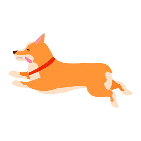 Happy cute dog. Welsh Corgi. Puppy fun runs, sticking out his tongue. Flat vector illustration.