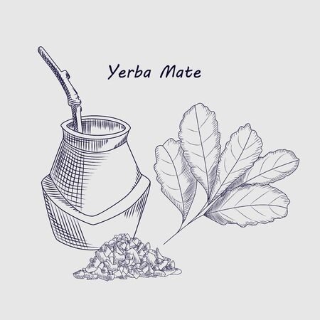 Concept of yerba mate drink isolated on background. Calabash and bombilla. forTraditional South American drink. Mate tea engraving style vector illustration.