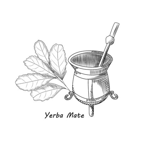 Calabash and bombilla for yerba mate drink. Mate tea engraving style vector illustration. Traditional South American drink.